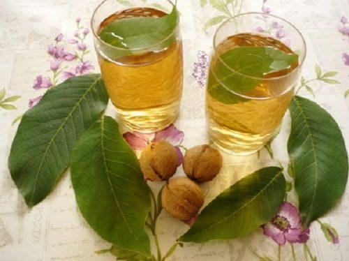 Настойка из листьев ореха